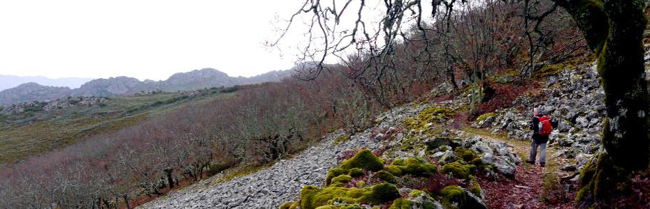 Ruta por las Villuercas, ruta de de Alfonso Onceno